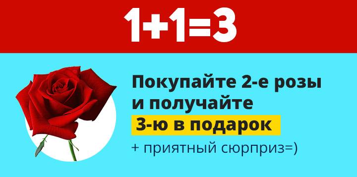 Акция на саженцы роз 1+1=3