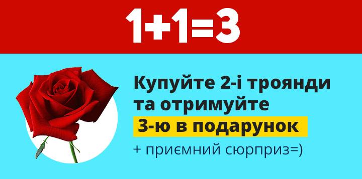 Акція на саджанці троянд 1+1=3