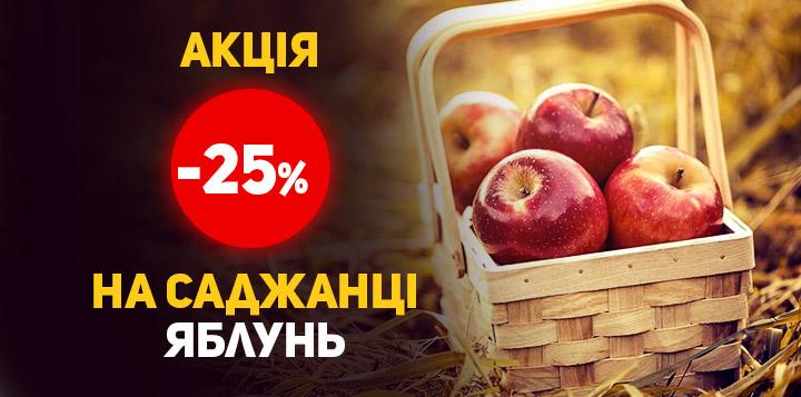 -25% на саджанці яблунь