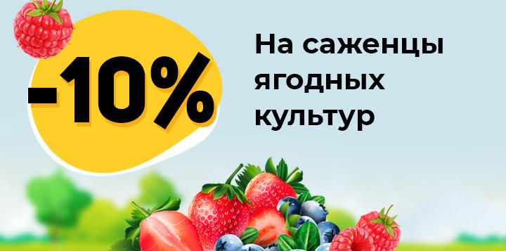 Скидка 10% на саженцы ягодных культур