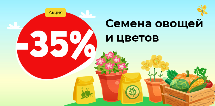 Семена овощей и цветов -35%