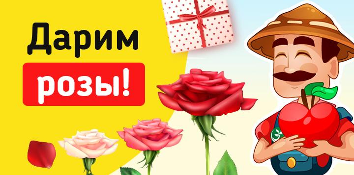 Дарим розы!