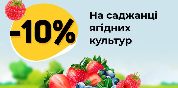 Знижка 10% на саджанці ягідних культур