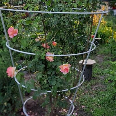 Підпори для рослин