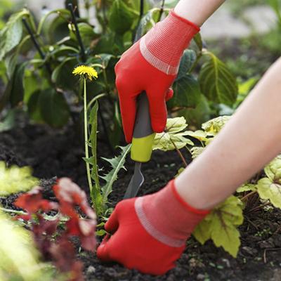Рукавиці садові