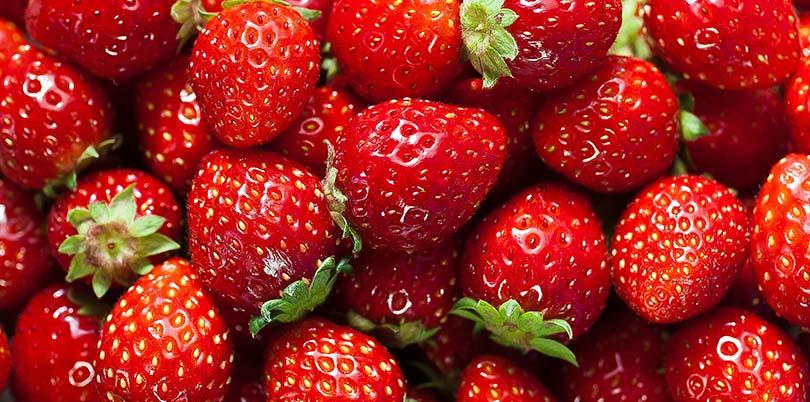 Знижка на саджанці полуниці -15%