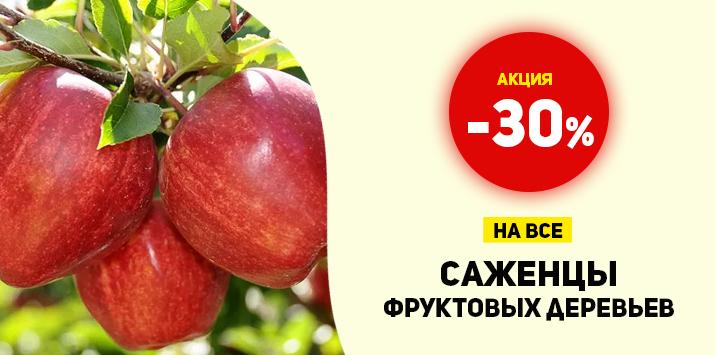 -30% на все саженцы фруктовых деревьев - Мега распродажа!
