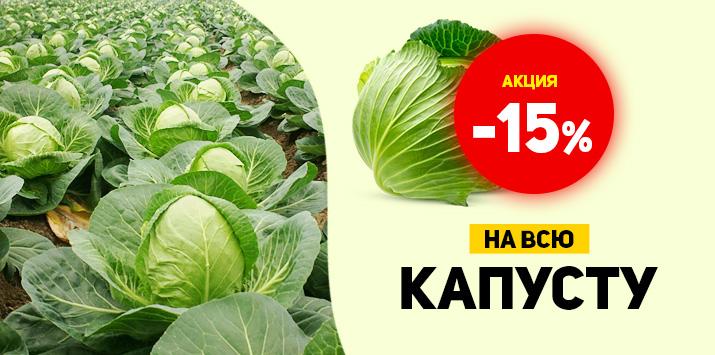 Скидка на семена капусты -15%
