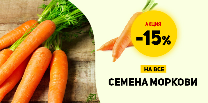 Скидка на семена моркови - 15%