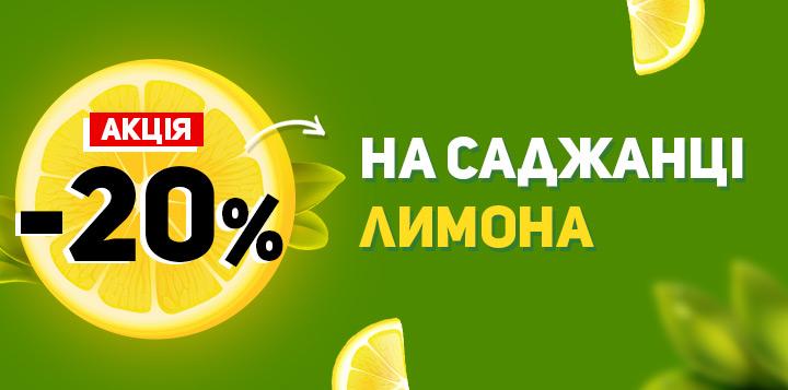 -20% на саджанці лимона