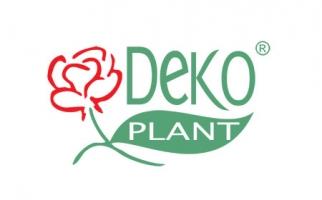 DEKO PLANT