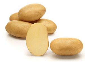 Картопля насіннева Таісія 5 кг, Solana
