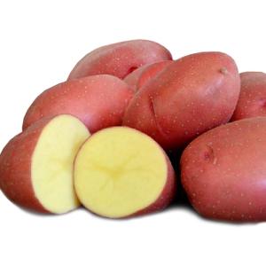 Картофель семенной Кристина 5 кг