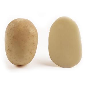 Картопля насіннева Саванна 5 кг